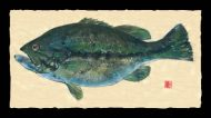 Largemouth (6 pounds)