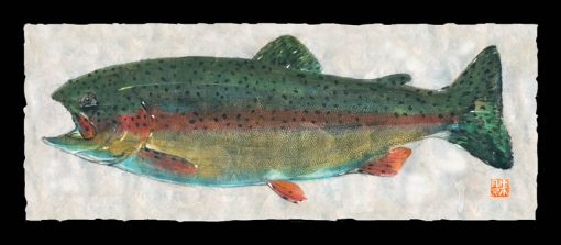 Rainbow Trout (Caney Fork River)